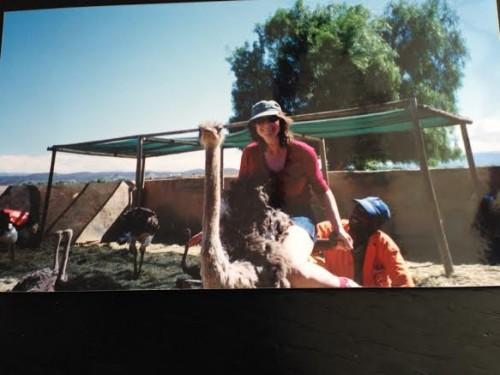 Sitting on an Ostrich